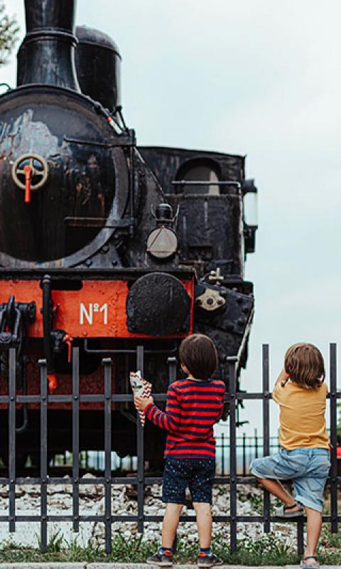 Locomotiva-81